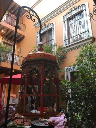 Hotel Boutique Parador San Miguel Oaxaca: photo8.jpg