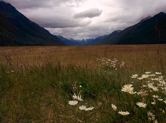 Fiordland National Park (Te Wahipounamu): Fiordland Park