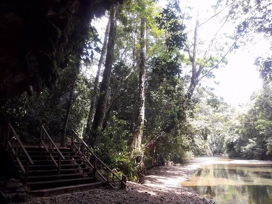 Cave Tubing and Jungle Trek Tour