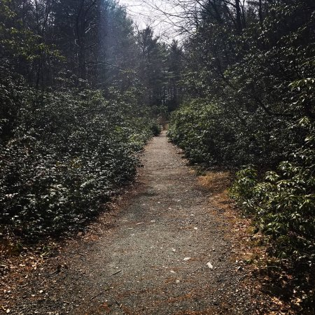 North Easton, Μασαχουσέτη: Walking Trail