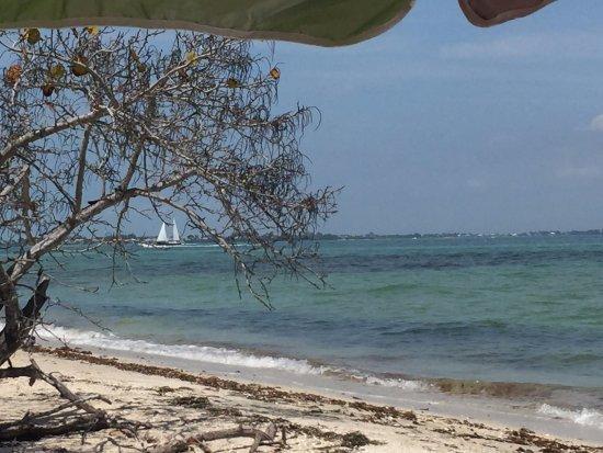 Boca Grande, FL: Sailboats.