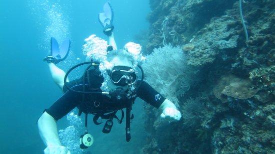 Нюеа-Клонг, Таиланд: Koh Jum Divers