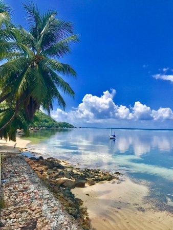 Анс-Буа-де-Роуз, Сейшельские острова: photo8.jpg