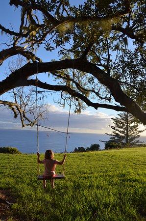 Cascade, Australia: Exploring in our Pjs