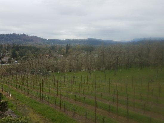 Roseburg, Орегон: 20170401_142033_large.jpg