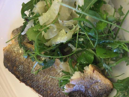 Broughton's at Preston Marriott Hotel: Sumac & Lime Sea Bass with Coriander & Fennel Salad