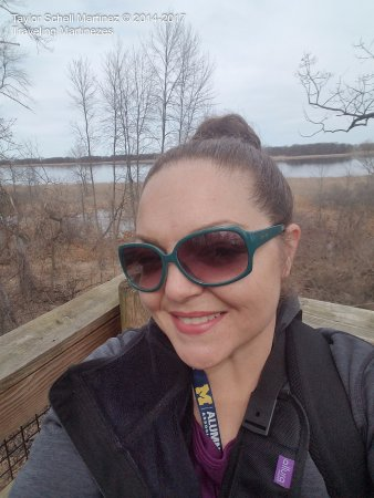 Bay City State Recreation Area: Myself atop one of the viewing platforms with Tobico Marsh in the background