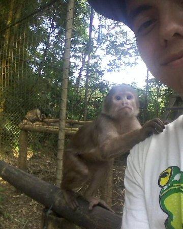 Cotundo, الإكوادور: Un pequeno amigo posando junto a mi, se llama Pancho y lo pueden encontrar en el zoologico el Ar
