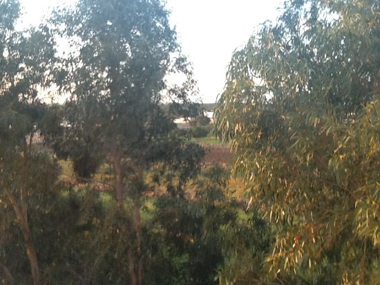 Dar Maris Maison d'hotes : Une vue depuis la terrasse sur le toit