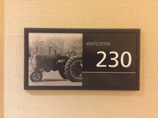 Hampton Inn by Hilton Toronto Airport Corporate Centre: Decor