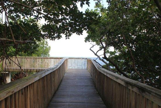 Kennedy Park : Caminho de madeira sobre o mar