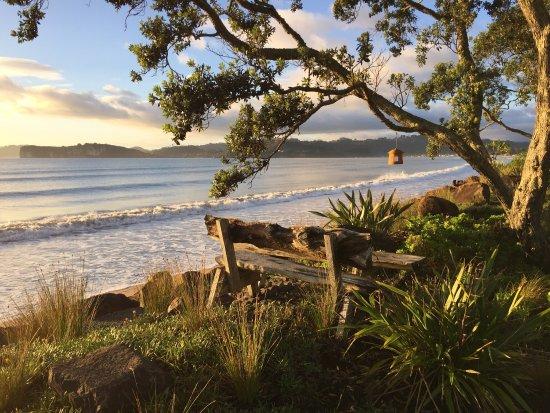 Beachfront Resort: photo4.jpg