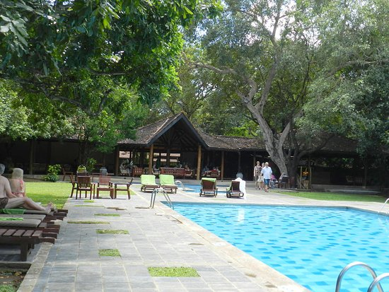 Hotel Sigiriya: Pool and Bar