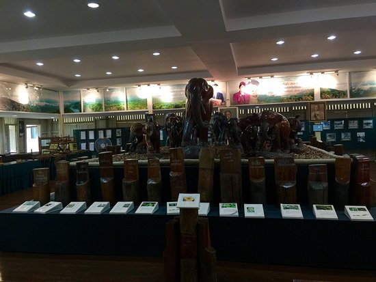 Phrae, Tajlandia: Teakwood hand carved into elephant of various size.