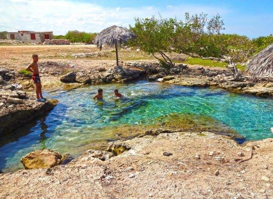 Cuban bohio on old illustration gibara bild fr n playa for Cubas de agua para llenar piscinas