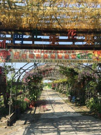 劍門生態花果園