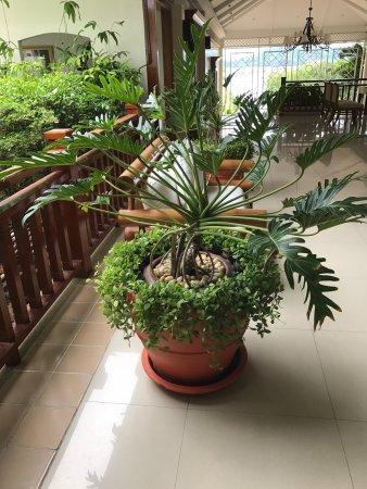 Kantary Bay, Phuket: Kantary Bay Hotel pictures
