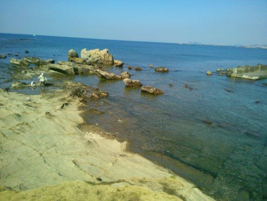 Hayama Park: 海水も綺麗で、ゴミもありませんきれいに使いましょう