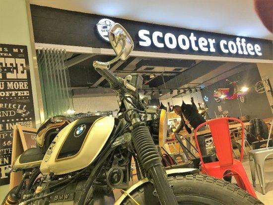 Scooter Irbis: yorumlar ve fotoğraflar 20