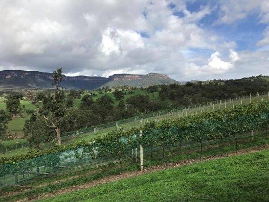 Megalong Valley, Australia: Dryridge Estate