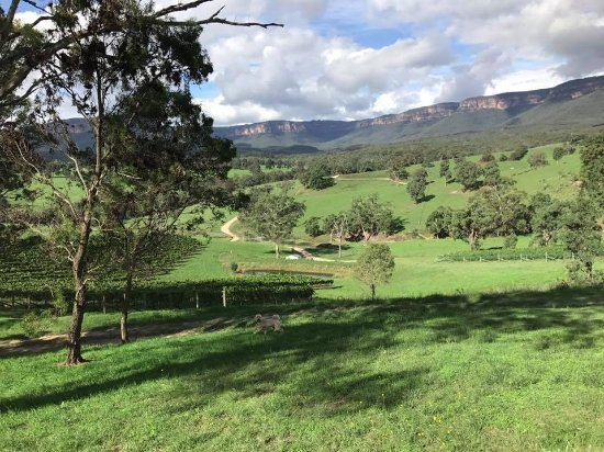 Megalong Valley, Australië: Dryridge Estate