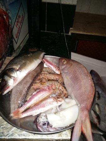 Fish Market: frischer Fisch