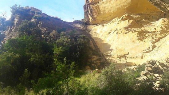 Estado Livre, África do Sul: Ladder on Holkrans