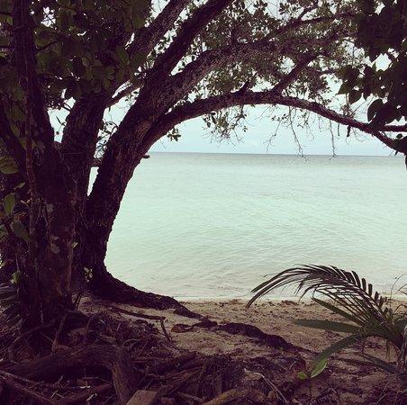 Leleuvia Island 사진