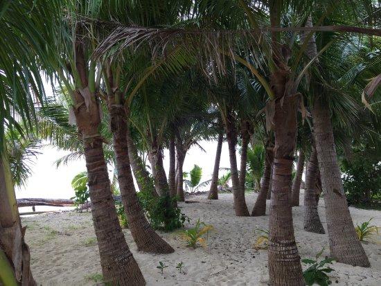 Leleuvia Island, Fiyi: photo3.jpg