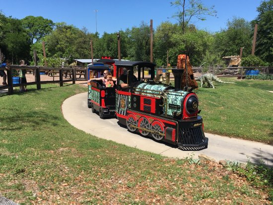 Dallas Zoo: photo0.jpg