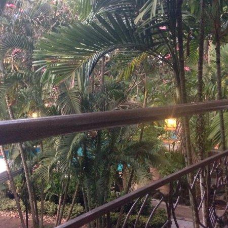The Viridian Resort: photo2.jpg