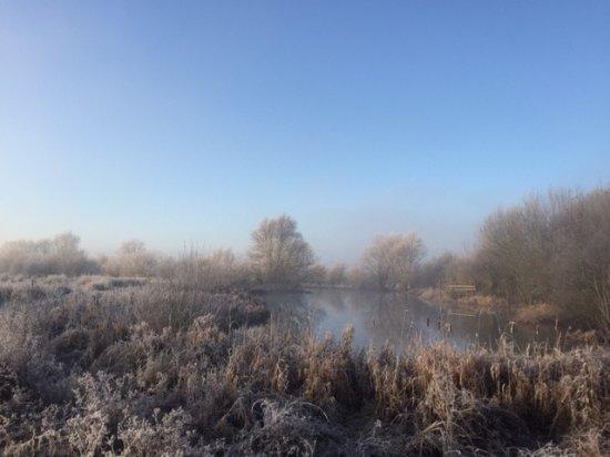 Hinchingbrooke Country Park: Winter morning next to nun's bridge