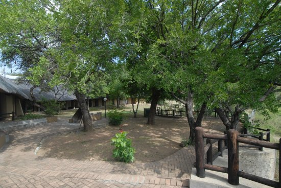 Skukuza Rest Camp: View of gardens with individual rooms in the backround