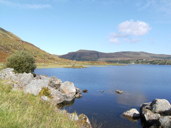Lough Talt Loop Walk