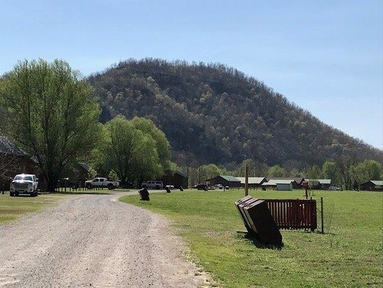 White Buffalo Resort: Road leading to cabins. Couldn't have been a more beautiful day!