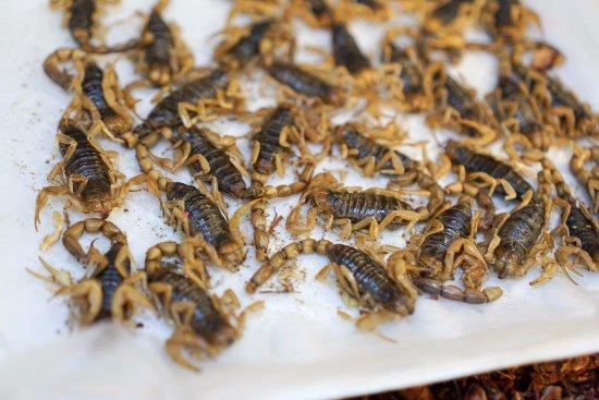 Sabores Mexico Food Tours: Mercado San Juan