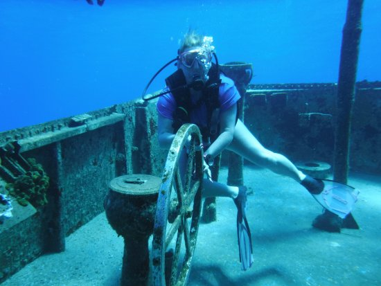 Kittiwake Shipwreck & Artificial Reef: The wheel on the Kittiwake