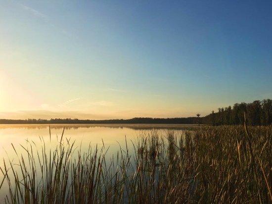 Lake Louisa State Park: Dixie Lake