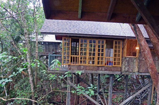 Permai Rainforest Resort: Treehouse 7under renovation (March 2017) taken from number 6