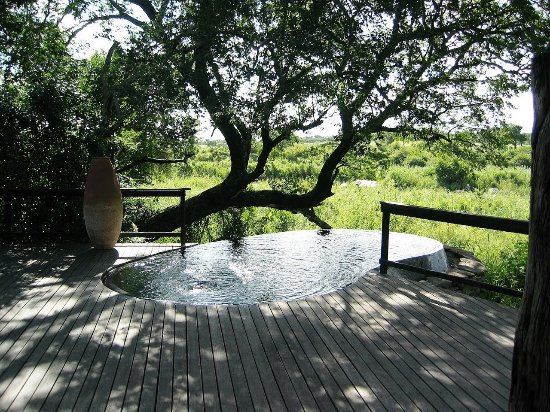 Singita Boulders Lodge : Kidney shaped pool with the best views of wild animals roaming close by.