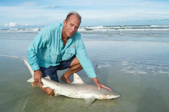 Shark Park Nsb Fish From Beach Tag Noaa Release
