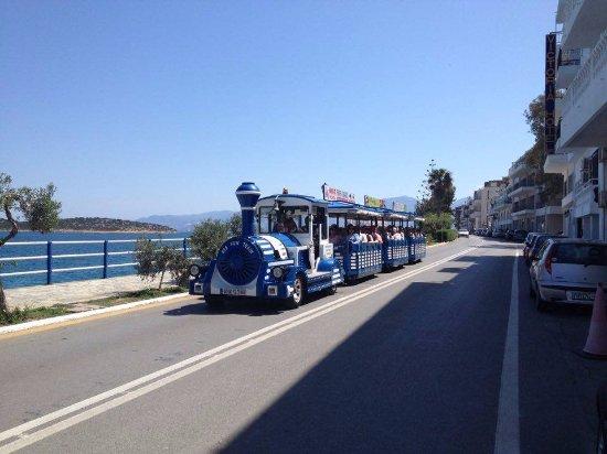 Little Train Tours