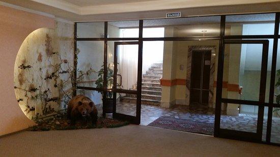 Irtysh Hotel: hall do urso, no 2o andar