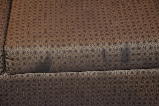 Comfort Suites West of the Ashley: Sofa, disgusting