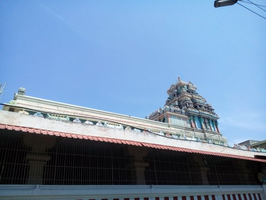 Viswaroopa Adhivyadhihara Sri Bhaktha Anjaneyaswami Temple : Gopuram of the temple