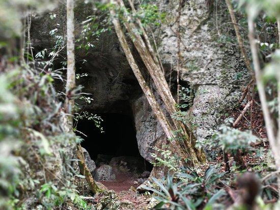 Bayahibe, Dominican Republic: entrée grotte