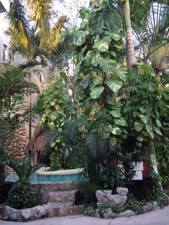 호텔 플라야 델 카르마 사진