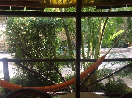 Hotel Playa del Karma: hammock outside our room
