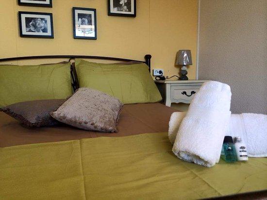 Zola, Yunani: Room's