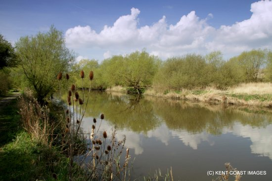 Stodmarsh National Nature Reserve: The river Stour at Stodmarsh